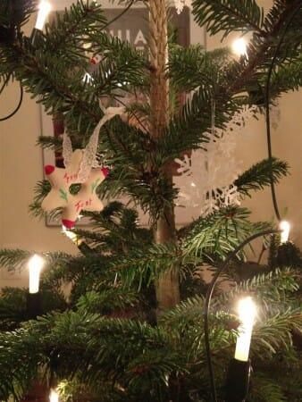 Der Tannembaum erstrahlt mit Spitzensternen und Zuckemännle