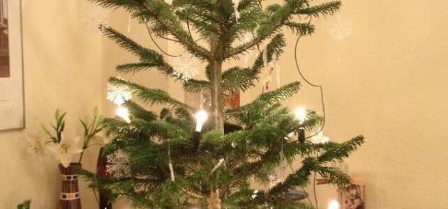 Der Tannenbaum ist mit kleinen Sternen aus Spitze geschmückt