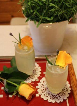 Lavendel Gin Fizz - Rezept im Modespitze Blog