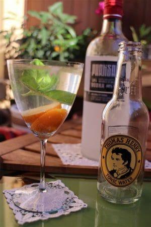 Cocktail Wodka-Tonic mit Kumquat