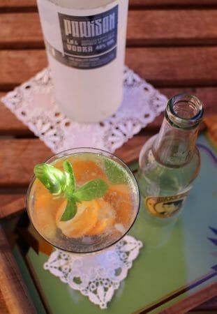 Sommercocktail - Wodka-Tonic mit Kumquats